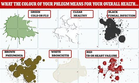 mucus color chart phlegm colour chart what your mucus says about your