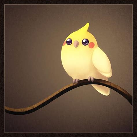 pics for gt cute cockatiel drawing