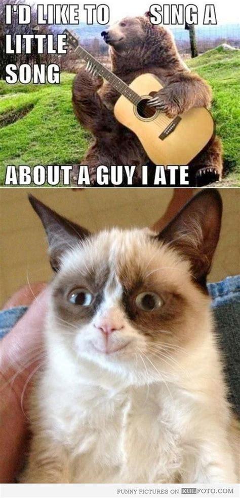Happy Grumpy Cat Meme - grumpy cat in a happy mood grumpy cat fans memes