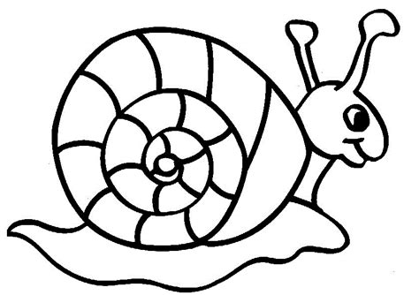 snail coloring pages preschool snail coloring pages clipart best