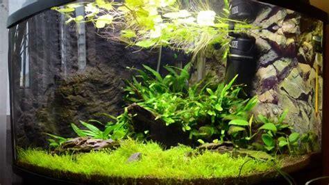 Aquarium 100 L by Akwarium 100l Pokaz Slajd 243 W Zdjęcia