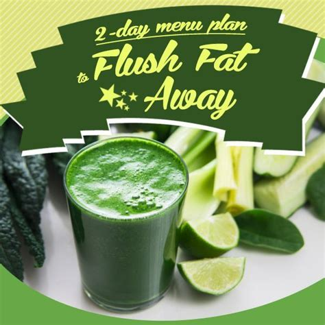 Vegetable Detox Meal Plan by 2 Day Menu Plan To Flush The Away Recipe Fruits
