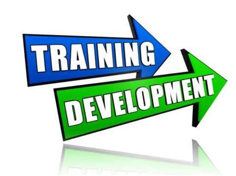 job training business and management training and development