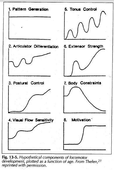 dynamic pattern theory a secure base beyond physical milestones part v dynamic
