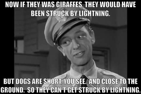 Barney Fife Memes - barney fife quotes quotes canyon