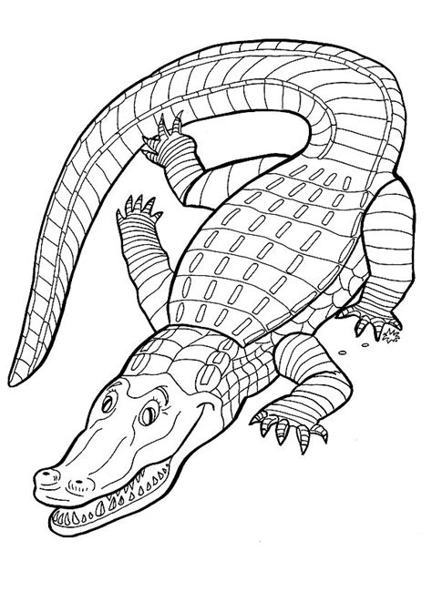Crocodile Coloring Pages Coloringpages1001 Com Alligator Coloring Pages