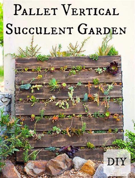 pallet vertical succulent garden blogher
