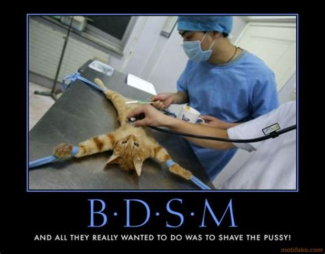 Bdsm Meme - demotivational poster bdsm and all they really wanted to