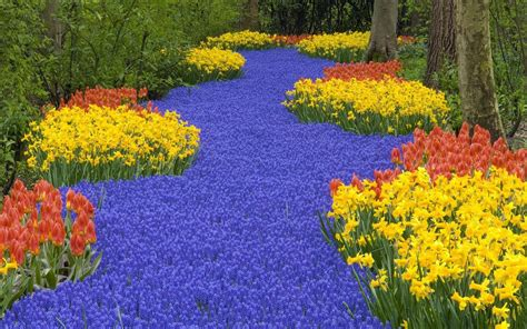 Permalink to Flower Garden Hd Wallpaper Free Download