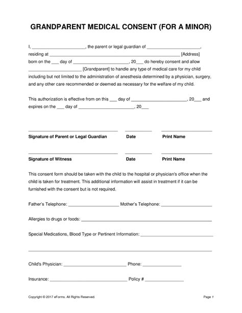 consent letter format pdf consent letter format pdf best of grandparents