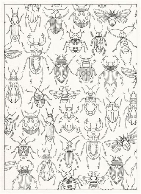 garden insects coloring page secret garden 20 postcards johanna basford
