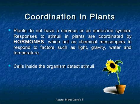 Chemical Coordination In Plants And Animals Essay by Interaction And Coordination
