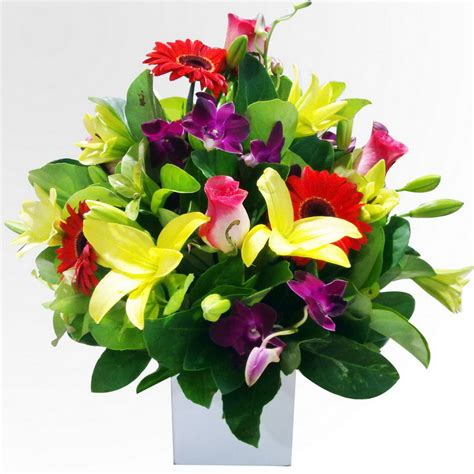 arrangement of flowers we list your online presence licensed for non commercial