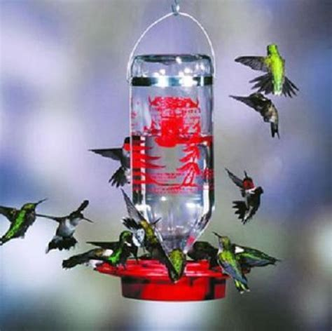 original best 1 hummingbird feeder 32 oz glass bottle