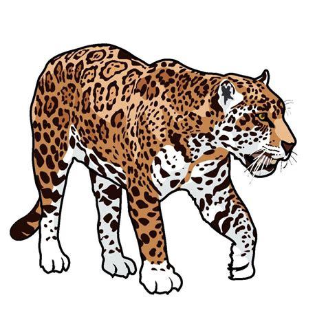 jaguar clipart hd jaguar animal cartoon clipart free clip art images file