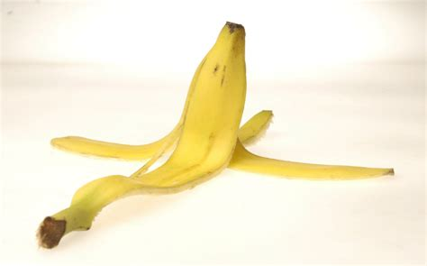 Banana Peel book excerpt how much should we fear banana peels
