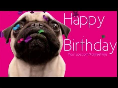 pug birthday ecard happy birthday ecard