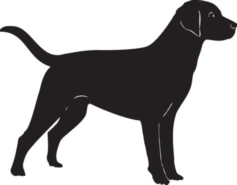 puppy vector haired dogs vector silhouettes