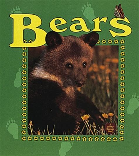 picture books about bears wxicof books