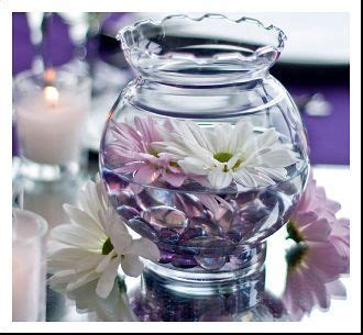 Cheap Vase Filler Ideas by 60 Best Images About Cheap Vase Fillers On