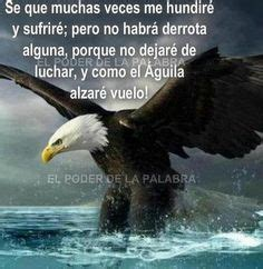 Las Lembaran Eagle 1000 1000 images about soy una aguila on eagles golden eagle and an eagle