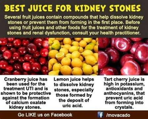 Does Cranberry Juice Detox Your Kidneys by Loved Ones Juice And Stones On