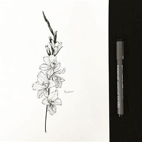 gladiolus tattoo designs best 25 gladiolus ideas on