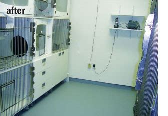 St Charles Parish Hospital Detox by Convention Attendees Rehabilitate Local Animal Shelters