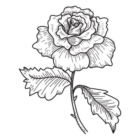 sketchbook transparent background flower sketch icon transparent png svg vector
