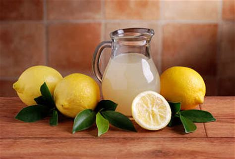 Bring Juice Into Your And Get Rid Of The Fats by How To Get Rid Of S Page 3 Of 3 Top 10 Home