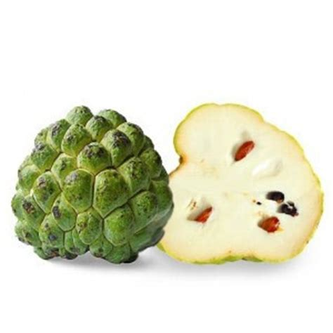 fruit l anone anone