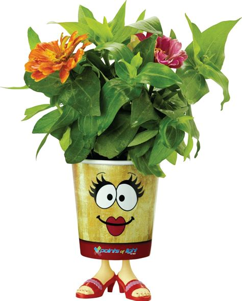 Grow Cup grow cups eco friendly garden kits china wholesale