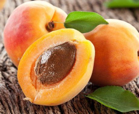 apricots celebrate national apricot day every day with 40 sweet fruity recipes books national apricot day local buzz magazine