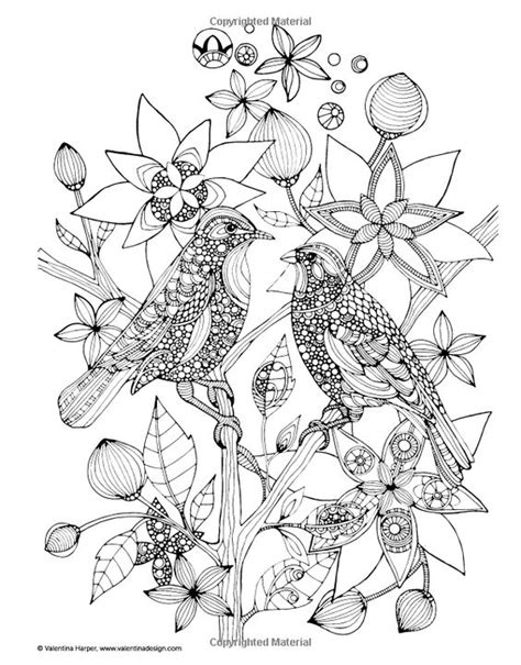 creative birds dot to dot coloring books activities coloring and creative on