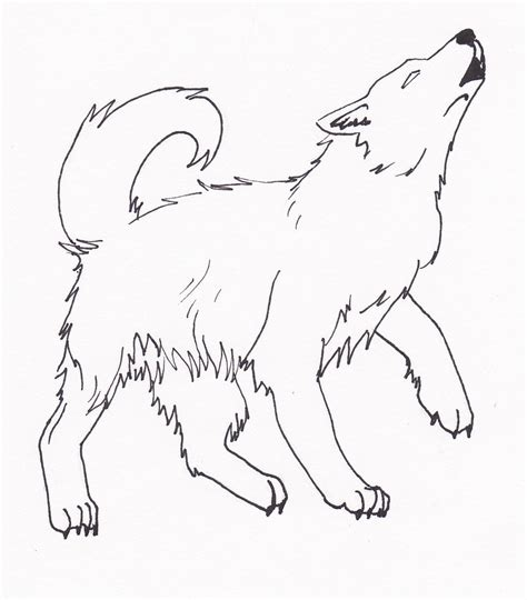 sketches of wolves coloring coloring pages