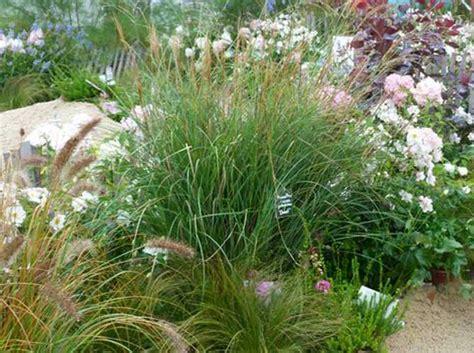ma terrasse n a pas de pente comment cr 233 er un jardin sur une pente d 233 coration