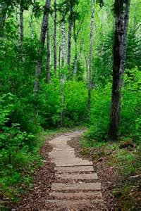 Hiking Trails In Hiking Trails Hiking Trails Locations Maps