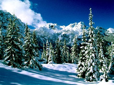wallpaper free snow scenes winter nature snow scene free desktop wallpapers for