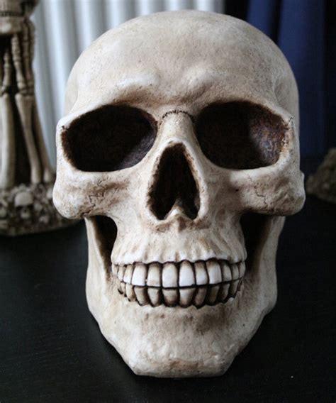 30 pictures of skulls creativefan