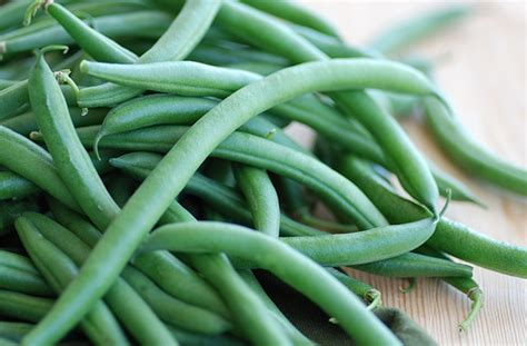 can dogs eat string beans food blogga why you should never eat canned string beans