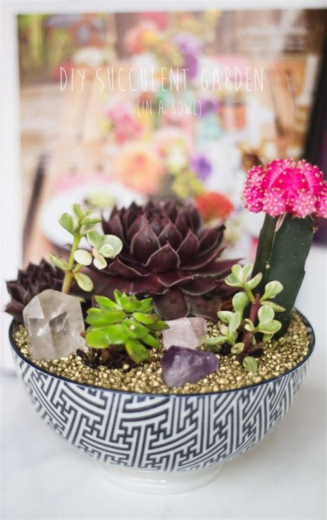 diy succulents 32 super creative diy succulent crafts and diys for you to