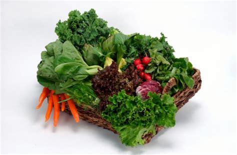 vegetables for liver detoxification of liver with foods liver