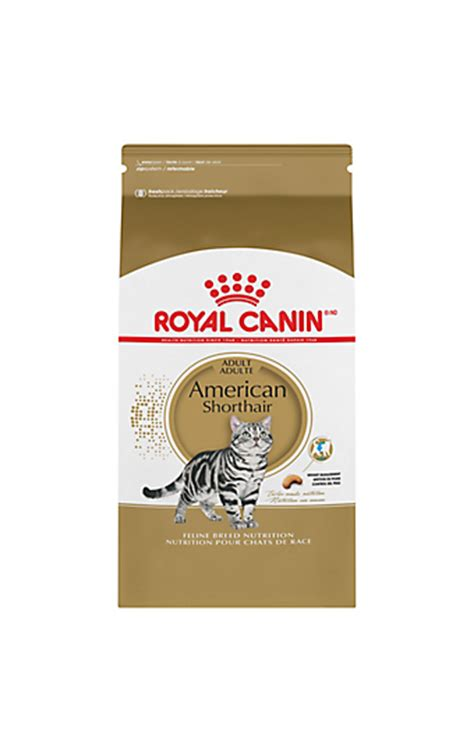 Royal Canin Shorthair Cat Food 85gr maine coon ragdoll siamese american shorthair
