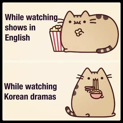 Pusheen Memes - pusheen cat meme