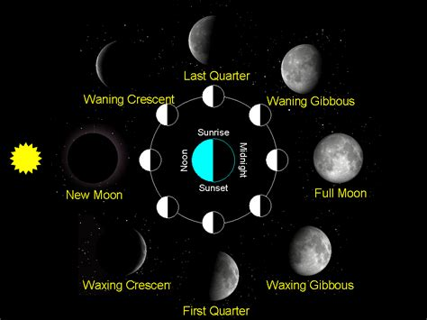 moon phase moon phases names in order new calendar template site