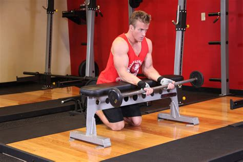 reverse barbell wrist curl over bench palms up barbell wrist curl over a bench exercise guide