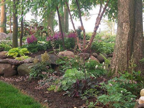 Trees For Backyard Shade by Shade Garden Coral Bells Hostas Mondo Grass Boston