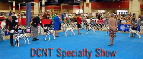 Winners Sweepstakes Mckinney Tx - dalmatian club of north texas