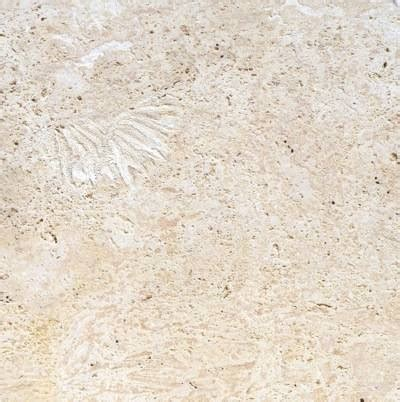 calypso coral coquina stone coral stone tiles by a ptrading