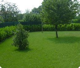 concimazione tappeto erboso bonaldo giardini concimazione si usa concimare i tappeti